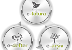 e-Fatura,e-Arşiv,e-İrsaliye Tasarım – Özelleştirme Yazılımları